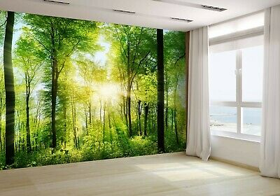 Panorama of a scenic forest Wallpaper Mural Photo 39809307 premium paper