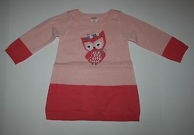 Neu Gymboree Mädchen Koralle Eule Colorblock Pullover Kleid 24m 3T Wiese Walk