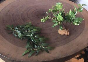Plantes artificielles pour terrarium