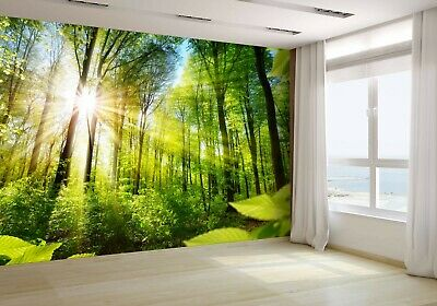 Scenic Forest of Fresh Green Trees Wallpaper Mural Photo 55444247 budget paper