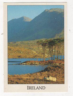 Connemara Derryclare Lough Ireland Postcard 886a