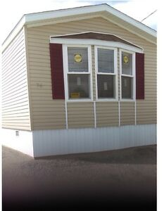 New 80 by 16 Mobile home on year round mobile home park