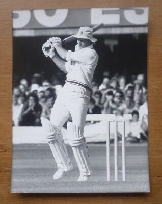 David Gower (Leicestershire & England), 1985 - Press Photograph (8'' x 6'').