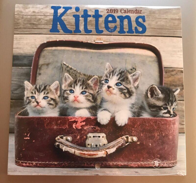 NEW Kittens 2019 Calendar Ephemera