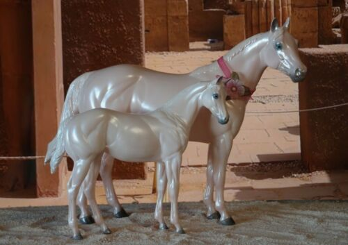 Peter Stone Stone Ideal Stock Horse ISH and weanling