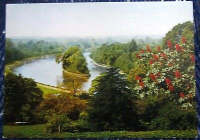 England a View of Richmond Hill Surrey - unposted
