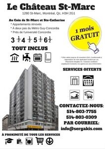 6 1/2 renovated in the heart of downtown Montreal