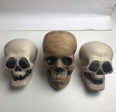 3 Decoration Plastic Skull Head Human Skeleton Scary Decor Halloween Blow Mold