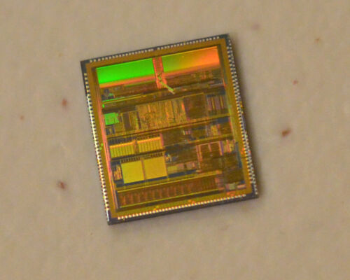 Vintage Intel 88C196EC CPU die: Wafer was diced but dies were never packaged.