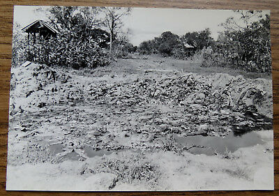 WWII PHOTO of JAPANESE DEAD AT MOGANNY