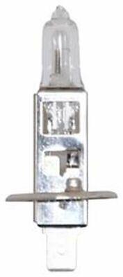 REPLACEMENT BULB FOR ECCO 6221005 ROTATOR LAMP 55W 12V Ecco Light Bulb Lamp