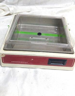 Hybridization Water Bath Bdhwb115 Belly Dancer Shaker Bath