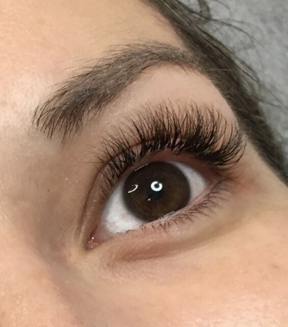 Volume Eyelash Extensions Only 100 For A Limited Time Beauty
