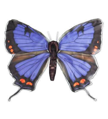 Wings For Costumes (Beautiful Butterfly Dress Up Costume Wings for Kids, Colorado)