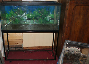 90 Gallon Aquarium with stand and Light