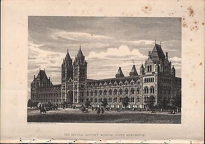 1875 Imágenes de Londres ~ Natural History Museum South (Londres Natural)
