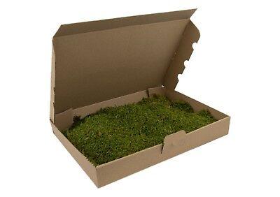 Moosplatten Moosmatten kaufen echtes KOKEDAMA Moos Dekomoos Moss Plattenmoos