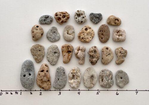"25 Natural Holey Beach Rocks <.75"" Hag Stones Fairy Lucky Wish Amulet Magic #B1"