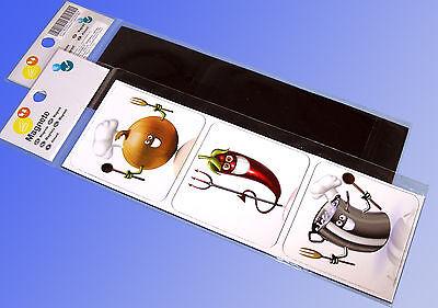 3 Fridge Magnets, Kitchen Magnet, Pin Board Magnet