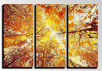 26002 Puente Noche 87 x 62 cm ref Cuadro Moderno Fotografico base madera