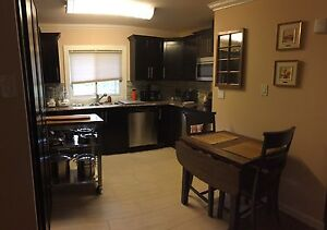 Condo in paradise fully furnished