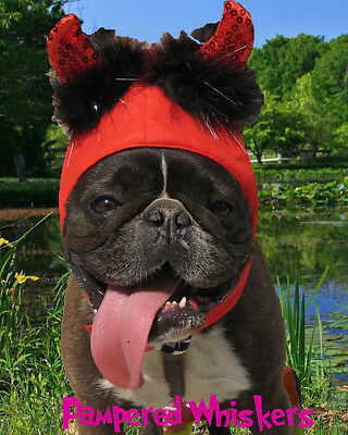 Little Devil Halloween devil costume for dogs 16-22