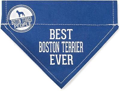 Best Boston Terrier Ever Dog Bandana New Blue Slip On Over Collar 7