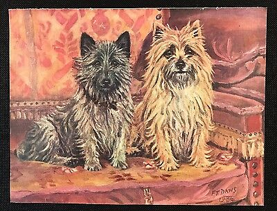 Original 1934 Colour Dog Print / Bookplate - CAIRN TERRIERS, Named Dogs, FT Daws