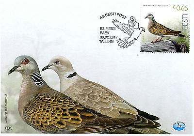 Estonia 2017 FDC Turtledove Bird of Year 1v Set Cover Pigeons Doves Birds Stamps