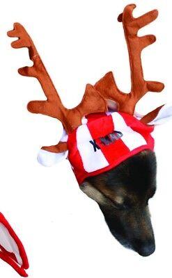 Weihnachtsmütze mit X-MAS Druck & Elchgeweih für große Hunde (Kostüme Für Große Hunde)