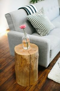 Troncs d'arbre pour decoration