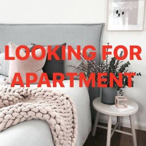 Looking for an apartment!