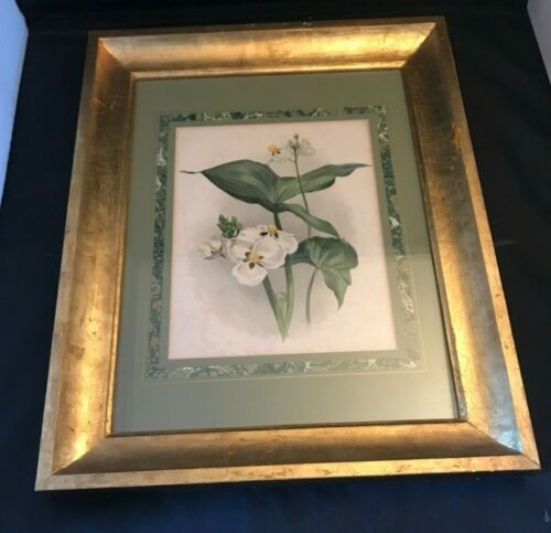 """Framed Picture Of White Flowers 19 3/4"""" x 15 3/4"""""""