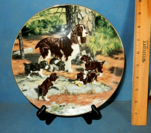 SPRINGER SPANIEL DOGS ROBERT CHRISTIE COLLECTOR PLATE HAMILTON STAND  PUPPIES