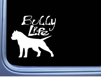 American Bully life *B176* sticker decal pitbull p