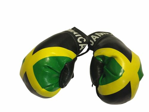 Jamaica  Boxing gloves Rear view mirror free shipping