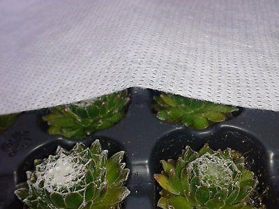 40m² WINTERFLIES (0,43Euro/m² Pflanzenschutz Winterschutz Flies Kälteschutzfolie