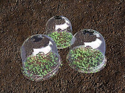 "5x Mrgarden Warm Worth Plastic Bell Cloche Protective Plant Cover 13""x11.8"""