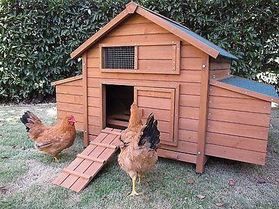 Recinto galline pollaio in legno quaglie anatre nido per deposizione uova