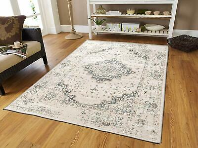 Traditional Distressed Area Rug 8x10 Large Rugs for Living Room 5x8 Gray (Ivory Traditional Rug)