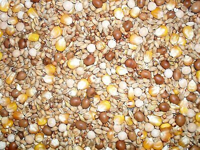 Johnston & Jeff Four Seasons General Economy Pigeon Seed Mix, 20kg (BBE Sep-22 )