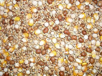 Johnston & Jeff All Rounder Pigeon Corn Food Seed Mix - 20kg