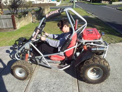 ZUMA RAIDER 150cc Heavy Duty Roll Cage Buggy Farmborough Heights Wollongong Area Preview