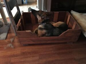 Large dog bed - raised