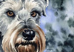 MINIATURE-SCHNAUZER-Painting-Dog-8-x-10-ART-Print-Signed-by-Artist-DJR