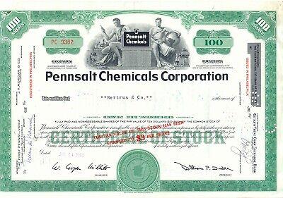 USA 1959 PENNSALT CHEMICALS CORPORATION, Philadelphia, attraktives Zertifikat