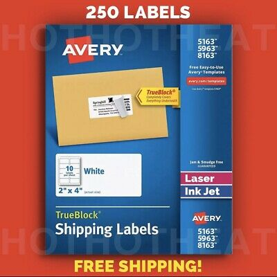 250 Avery 596351638163526318163 Address Mailing Shipping Labels 2 X 4