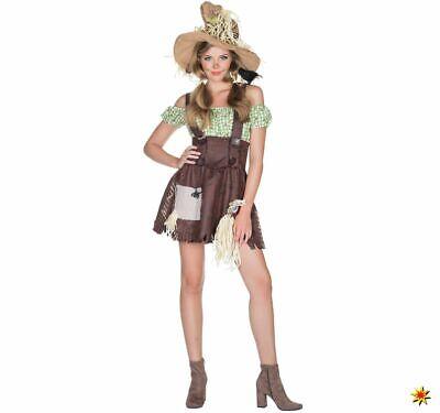 cheuche Zauberer von OZ Gr. 34-44 Kleid Fasching (Zauberer Von Oz Vogelscheuche)