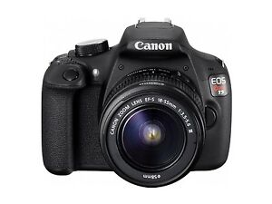 Canon rebel t3i /lenses and accessories