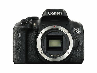 Canon EOS 750D - Rebel T6i from 6ave